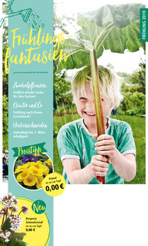 Beilage Marketing ekaflor Frühling